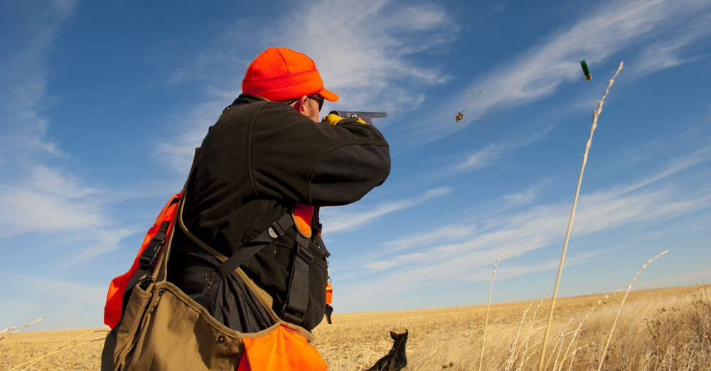 an analysis of the best hunting trip Information on hunting and trapping in alaska  plan your hunt workbook  and acquiring all gear and packing it for the trip .
