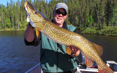 Planning a Canada Fishing Trip? Here's What You Need To Know